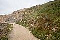 Path Through Sutro Park, San Francisco (29690512251).jpg