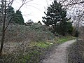 Path at Toton - geograph.org.uk - 1111516.jpg