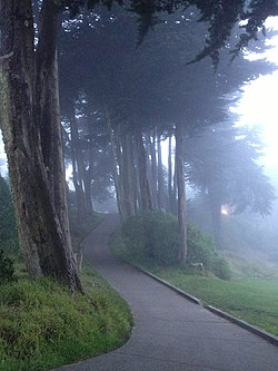 Pathway at Lincoln Park Golf Course, San Francisco.JPG