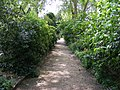 Pathway in Eccleston Square Gardens - geograph.org.uk - 1297587.jpg