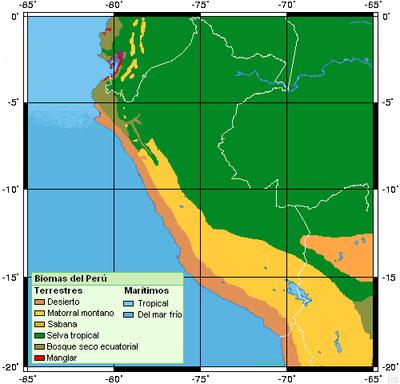 en el Perú hay tres regiones naturales ( la costa , la sierra y la