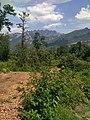Percorso panoramico al interno del Parco del Monte Barro.jpg