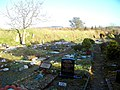 Pet cemetery - geograph.org.uk - 103989.jpg