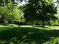 Picnic area in Balmaha - geograph.org.uk - 828101.jpg