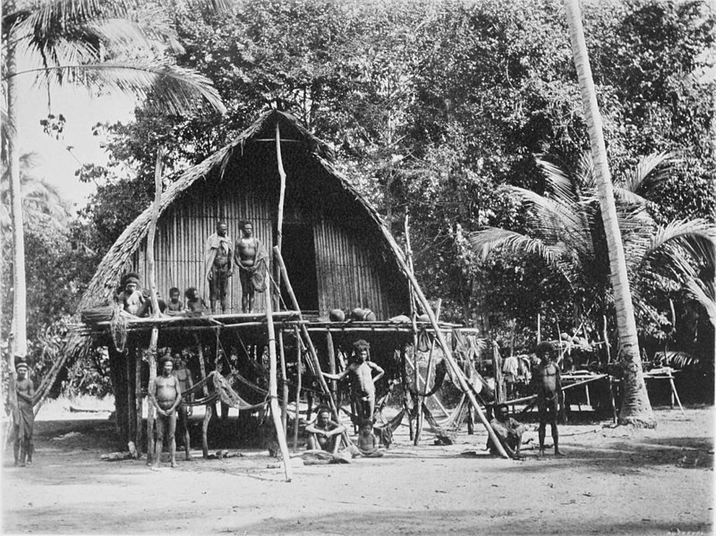 Black and white photograph a single-storey house raised on stilts. Naked tribeman stand on the ground and the, for want of a better word, verandah.