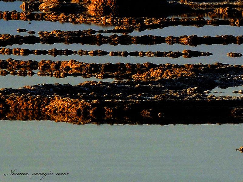 ים המלח - זריחה בזהב