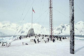 Chilean Antarctic Territory - Penguins near President Gabriel González Videla Base (1957)