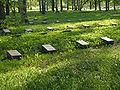 Piskarevskoye Memorial Cemetery individual graves 1941.jpg