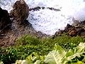 Playa Puerto Hermina, Quebradillas, Puerto Rico.jpg