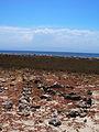 Playa de Puerto Píritu.jpg