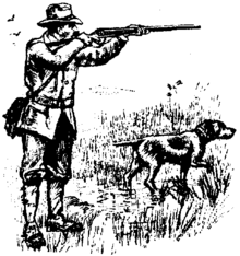 Hunting Dog Coloring Pages