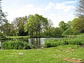 Pond at Great Hautbois Common - geograph.org.uk - 1279037.jpg