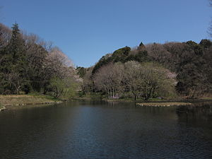 Pond in Yatoyama.jpg
