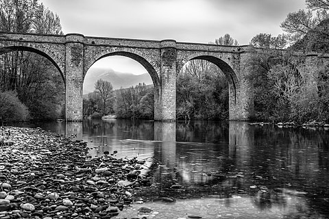 Ceps bridge