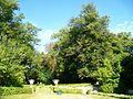 Pontoise (95), château de Marcouville, parc, parterres ouest.jpg