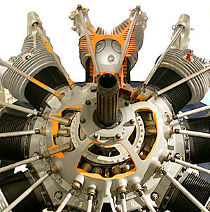 Pratt & Whitney R-1690 Hornet - R-1690 with chamber walls cut away to show internal workings