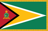 Presidential (or State) Colour of the Guyana Defence Force