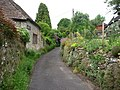 Pretty lane in Lodsworth - geograph.org.uk - 1333670.jpg