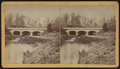 Prospect Park, Brooklyn, New York, from Robert N. Dennis collection of stereoscopic views.png