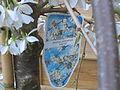 Prunus yedoensis1.jpg