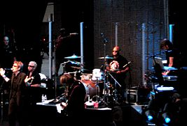 The Psychedelic Furs v roce 2008