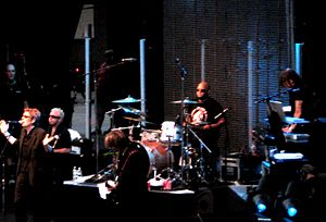 The Psychedelic Furs vuonna 2008.