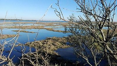 Puerto del El Terron.jpg