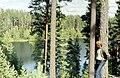Punkaharju-20-Wald-1975-gje.jpg