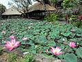 Pura Taman Saraswati (6337601456).jpg