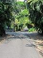 Puuhonua Rd, Captain Cook - panoramio.jpg