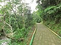 Puyo paseo turístico 5 ene 2015 055 (16193610856).jpg