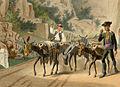 Pyrénées transport de vin par des muletiers.jpg
