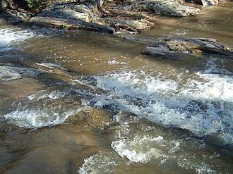 Quantico Creek - Quantico Falls in Prince William Forest Park