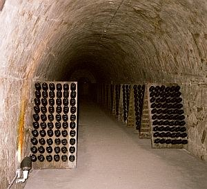 Sparkling wine production - Champagne bottles in racks in underground cellars