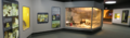 ROM-DinoGallery-SecondRoom-panorama.png