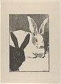 Rabbits (Les Lapins) MET DP834402.jpg