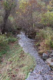 Raccoon Creek (Tomhicken Creek tributary)