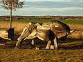 Raddusch (Raduš) - aurochs.JPG