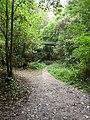 Rail overbridge in the woods - geo.hlipp.de - 41302.jpg