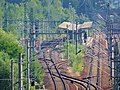 Rail transport in Pirna 123284629.jpg