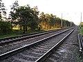 Railroad near Knyazhichi - panoramio.jpg