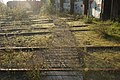Railway-hub-bremerhaven-21 hg.jpg