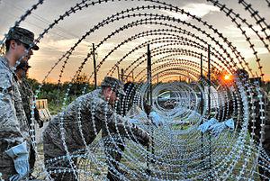 Concertina wire - Triple concertina wire fence