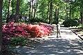Rhododendronpark Bremen 20090513 241.JPG