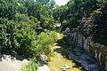 Richardson August 2019 17 (Spring Creek).jpg
