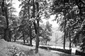 Riseberga kloster - KMB - 16001000017554.jpg