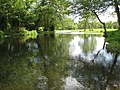 River Mimram near Poplars Green - geograph.org.uk - 1319730.jpg