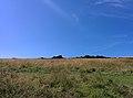 Rock-cornwall-england-tobefree-20150715-152727.jpg