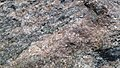 Rock 123.jpg