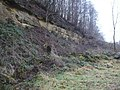 Rockface in Gundale after quarrying - geograph.org.uk - 643763.jpg